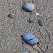 Pebbles Of Blue Art Print