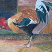 Pecking Around Art Print