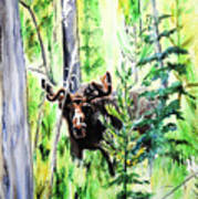 Peek A Boo Moose Art Print