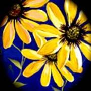 Peekaboo Sunflowers Art Print