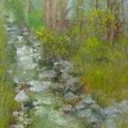 Peekskill Hollow Creek Art Print