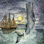 Pehe Nu-e: Moby Dick Art Print