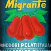 Pelati Migrante 2008 Art Print