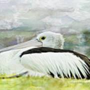 Pelican Art 0006 Art Print