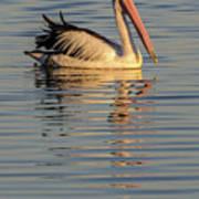 Pelican At Sunset 1 Art Print