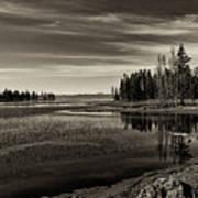 Pelican Bay Morning - Yellowstone Art Print