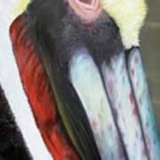 Pelican Closeup 2 Art Print