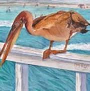 Pelican Dude Art Print
