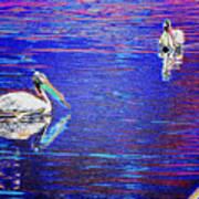 Pelican Mates 2 Art Print