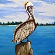 Pelican On Post 2 Art Print