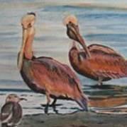 Pelican Party Art Print