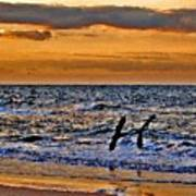 Pelicans Crusing The Coast Art Print