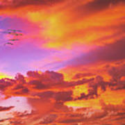 Pelicans Flying Into Sunset  Art Print