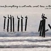 Pelicans Perched Quote Art Print