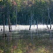 Pemigewasset Wilderness - White Mountains New Hampshire Usa Art Print