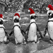Penguins With Santa Claus Caps Art Print