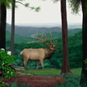 Pennsylvanian Elk Art Print