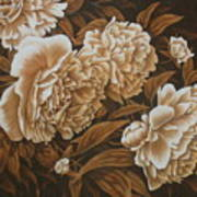 Peonies In Sepia Art Print by Karen Coombes