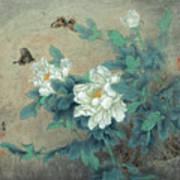 Peony Butterfly Art Print