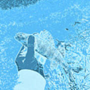 Perch Blue Art Print