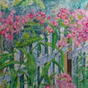 Perky Pink Phlox In A Dahlonega Garden Art Print