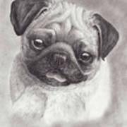 Perky Pug Art Print