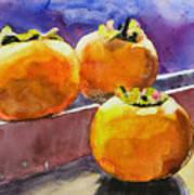 Persimmon Art Print