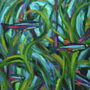 Persistent Fish Betta  Art Print