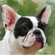 Pet Bulldog Portrait Art Print