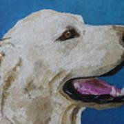 Pet Portrait Of Smiley Riley Art Print