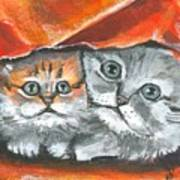 Pet Portraits-two Kitties Art Print