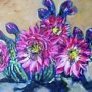 Petalos De Rosa Art Print by Sheila Tajima