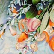 Petals And Peels Art Print