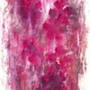 Petals In The Night Art Print