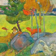 Petit Breton A L'oie Art Print