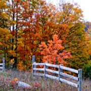 Petoskey Autumn Fence Art Print