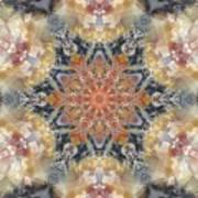 Petrified Snowflake Art Print