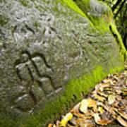 Petroglyphs At An Archaeological Site Art Print