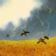 Pheasants On The Rise Art Print