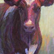 Phoebe Of Merry Mead Farm Art Print