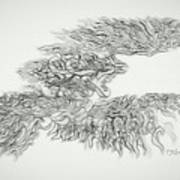 Phoenix Rising Sketch Art Print
