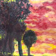 Phoenix Sunset Art Print