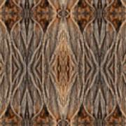 Photodiseno Tree Bark Pl Art Print