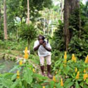 Photographer In The Jungle Art Print