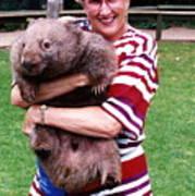Phyllis Holding Thirty Lb Wombat Australia Art Print