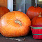 Pick A Pumpkin Art Print
