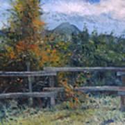 Picket Fence Near Heidelberg Western Cape South Africa Art Print