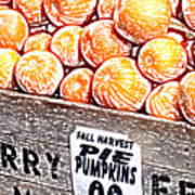 Pie Pumpkins For Sale Art Print