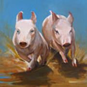 Pig Sooie Art Print