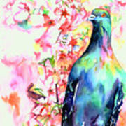 Pigeon Eye Art Print